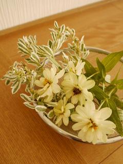 flowerArrange01.jpg