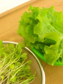 lettuce04.jpg