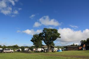 朝キャンプ場