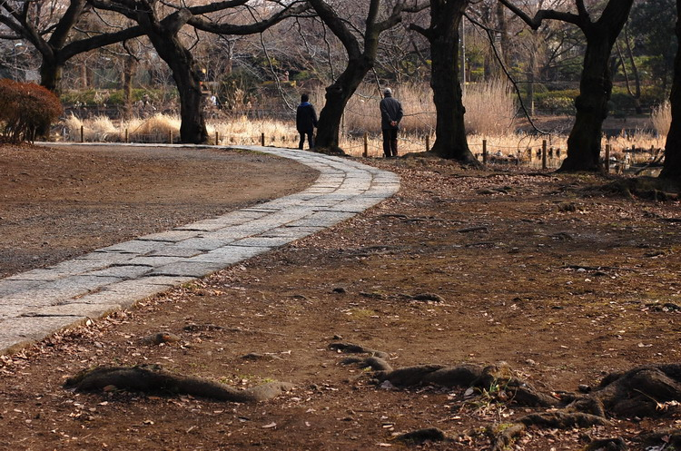 下池遊歩道