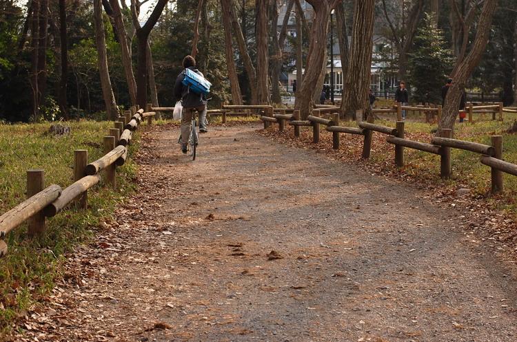 自転車遊歩道