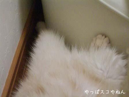 足も隙間♪