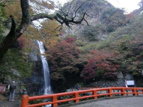11月24日滝