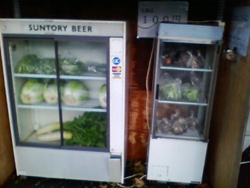 11月25日野菜