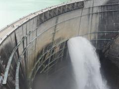 dam2009-1.jpg