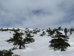 金峰山 尾根へ