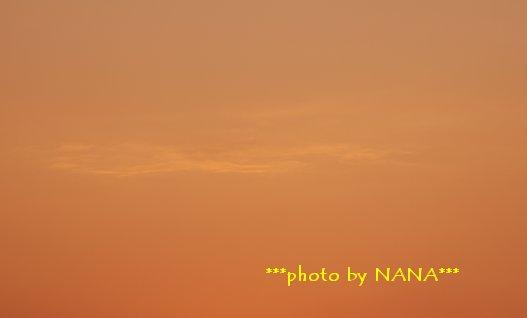 photo14-8.jpg