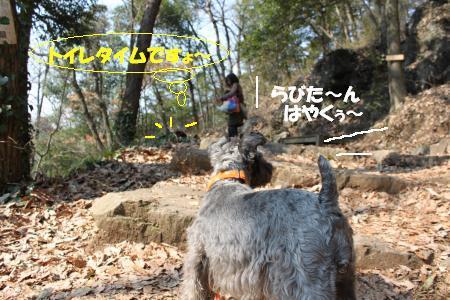 IMG_2999_20100201200827.jpg