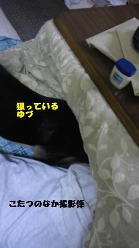 008_convert_20091130210923[1]