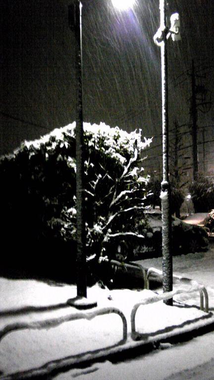 雪のバレンタイン2