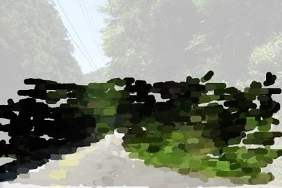 oil-5.jpg