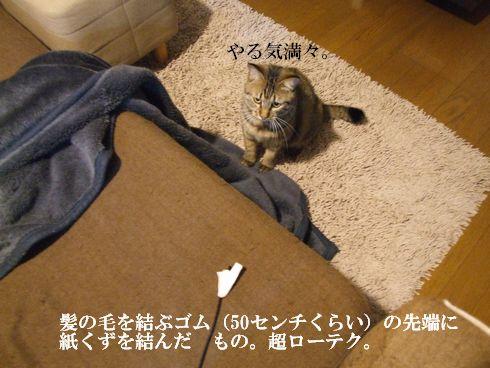 05_20091130234634.jpg