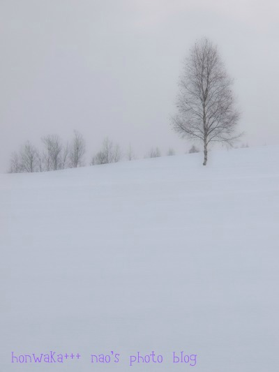 10.美瑛冬景色