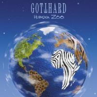 Gotthard _ Human Zoo
