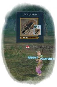 2010-02-09 バイオリン虫