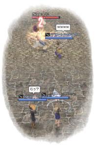 2010-02-11 チップスさんを狙撃