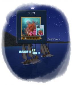 2010-03-09 サンゴ