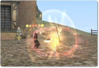 2010-04-25 マリシュさんの攻撃