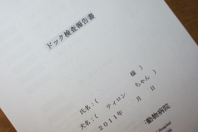 コピー ~ DSC02626(1)A