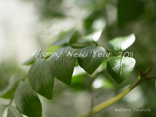 natura cubica new year greeting
