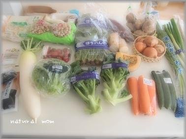 1週間分の野菜