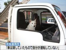 猫頭トレーニング日記-image0163.jpg