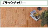 fig2_mmax.jpg