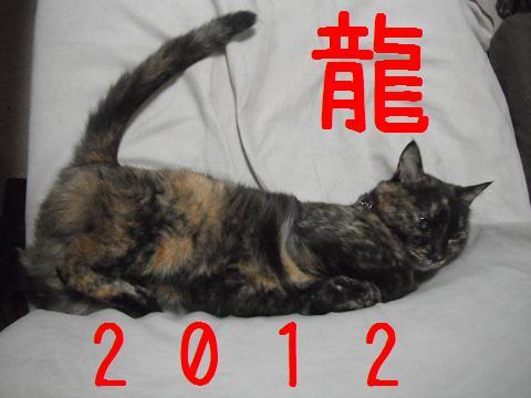 2012龍年