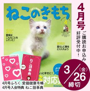 hyoshi_20100306213704.jpg