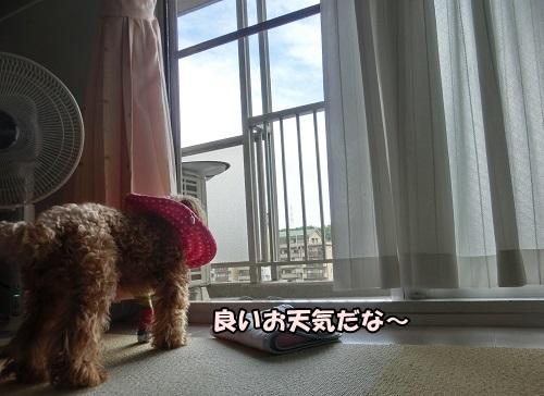 251005②