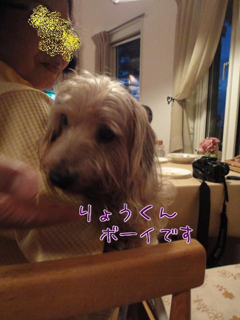 12b_20100728190509.jpg