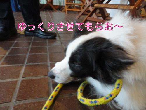 12f_20100919194450.jpg