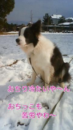 12t_20110212162940.jpg