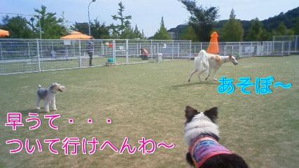 18i_20101018230304.jpg