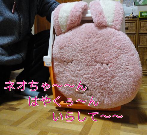 311_20110131205758.jpg
