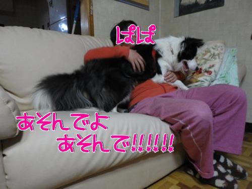 3272_20100327215718.jpg