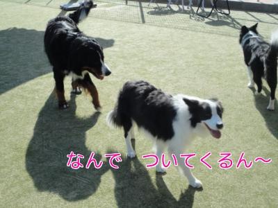 84_20101208155000.jpg