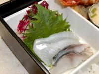 H2203_sashimi_20100401125558.jpg