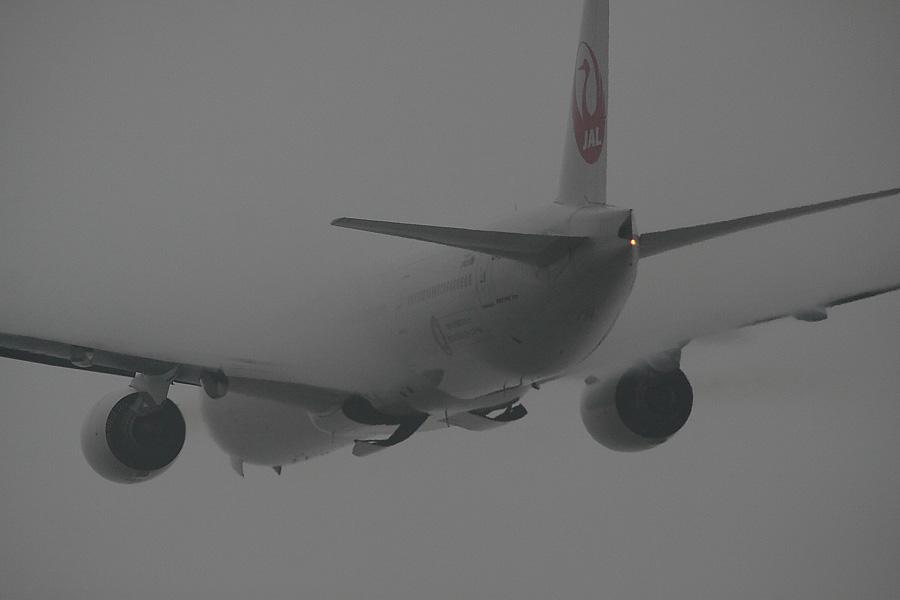 JAL B777-346 JAL2081@RWY14Rエンド猪名川土手(by EOS 50D with SIGMA APO 300mm F2.8 EX DG/HSM + APO TC2x EX DG)