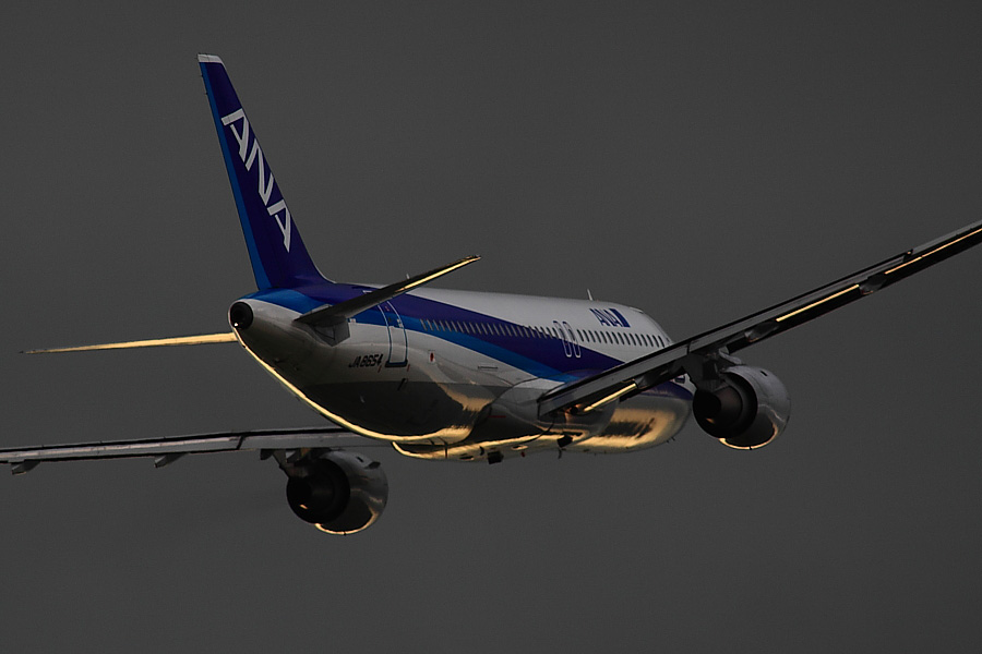 ANA A320-211 ANA505@下河原緑地展望デッキ(by EOS50D with SIGMA APO 300mm F2.8 EX DG/HSM + APO TC2x EX DG)