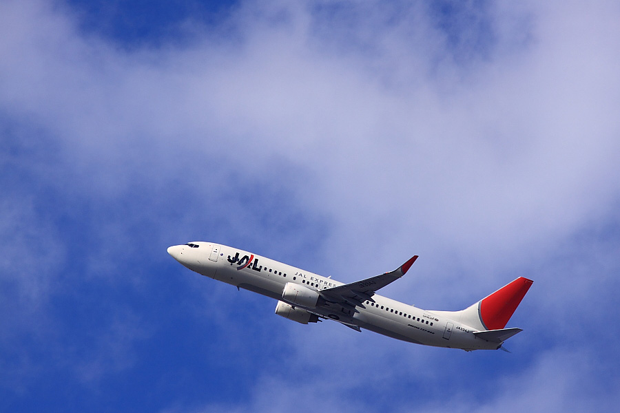 JEX B737-846 JAL3006@瑞ヶ池公園(by EOS 50D with SIGMA APO 300mm F2.8 EX DG/HSM + APO TC1.4x EX DG)