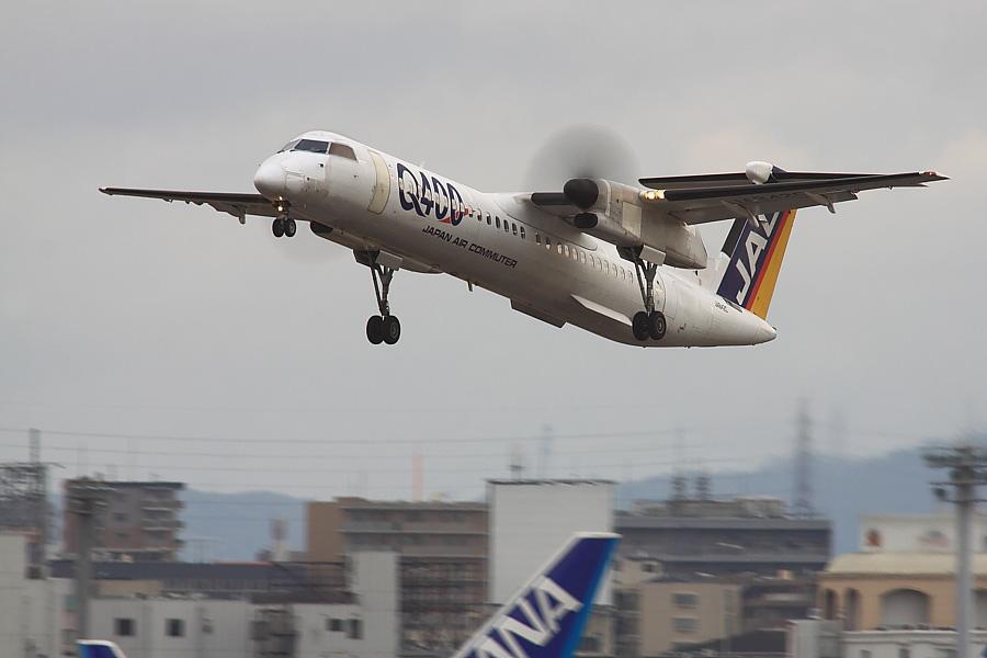 JAC DHC-8-402Q JAL2403@RWY14Rエンド猪名川土手(by EOS 50D with SIGMA APO 300mm F2.8 EX DG/HSM + APO TC2x EX DG)