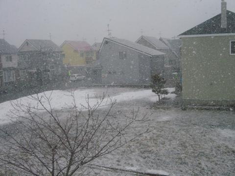 冬カムバック1