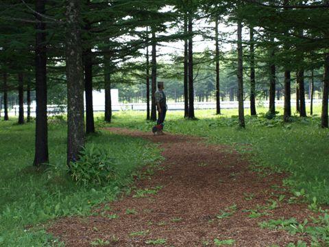 森林演習7
