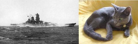 帝国海軍2
