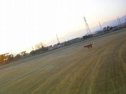 SANY0022_20100224190249.jpg