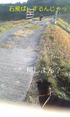 20091230033325.jpg
