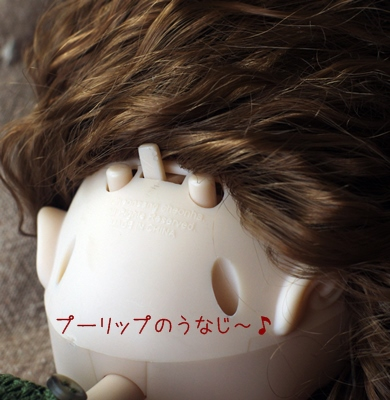 pu_unaji.jpg