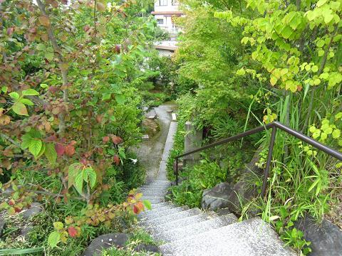 階段を、、、