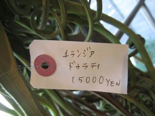 15,000円!?